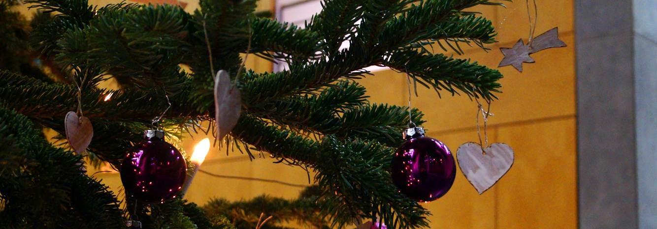 Dr. Daniela De Ridder lädt ein zu einem weihnachtlichen Besuch nach Berlin