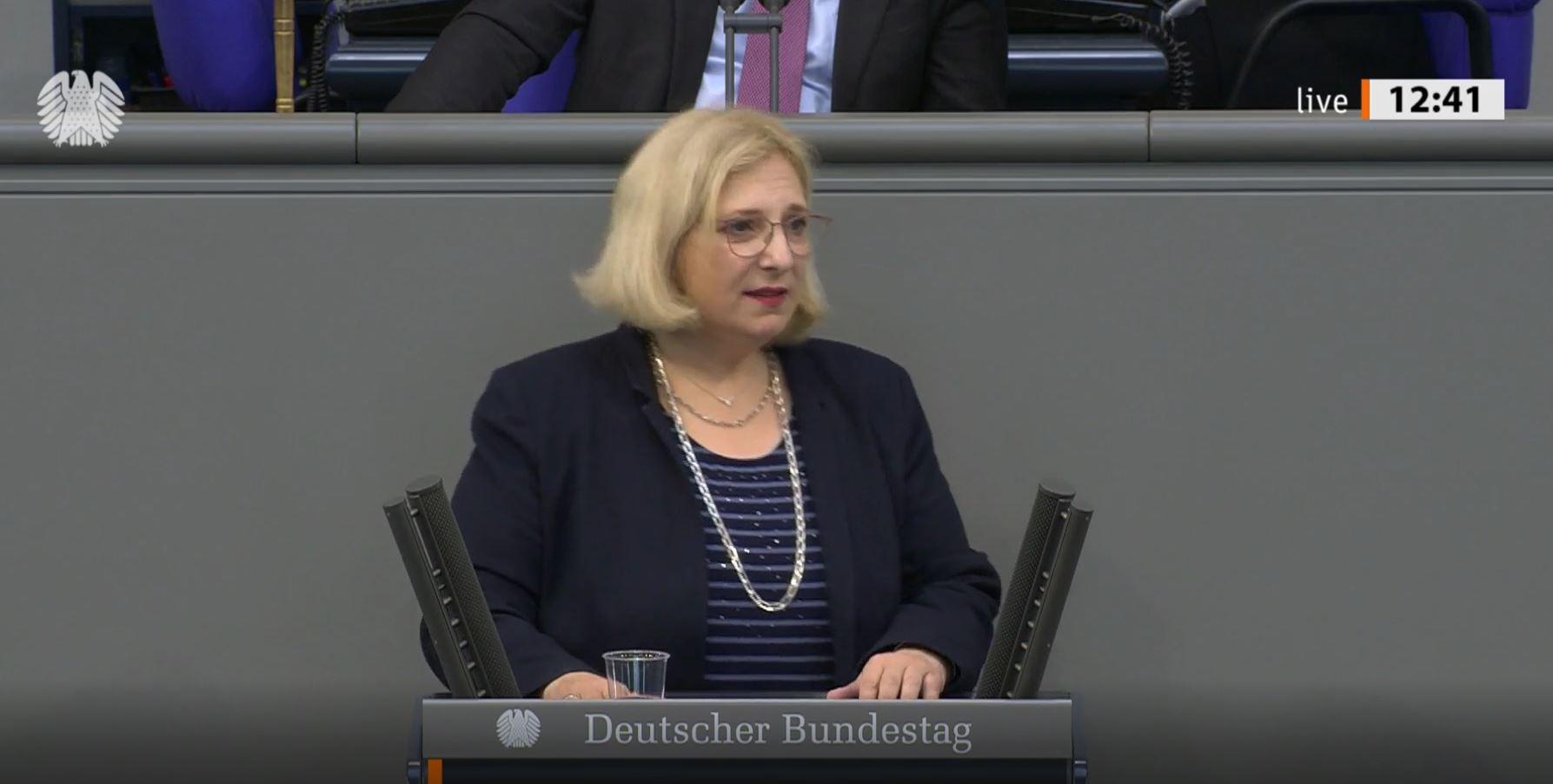 Rede im Plenum zur Änderung des Außenwirtschaftsgesetzes
